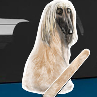 Afghan hound Wagging Wiper car sticker