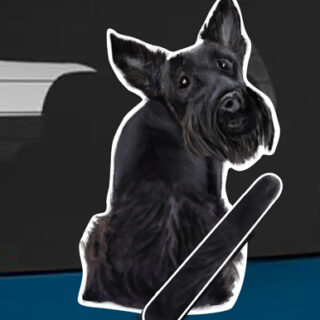 Scottish Terrier A dog rear window wagging wiper tail sticker